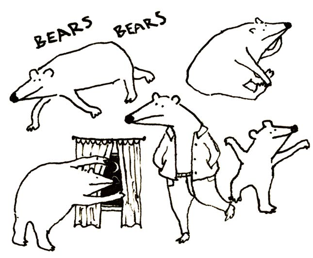 Bears of the long nose genus