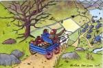 A new llama cart