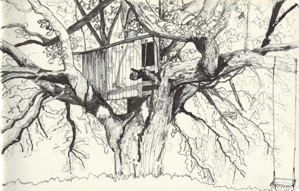 Treehouse in oak tree