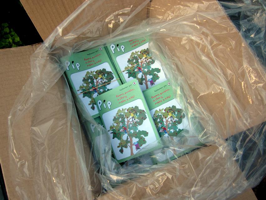 Box of Pip magazines