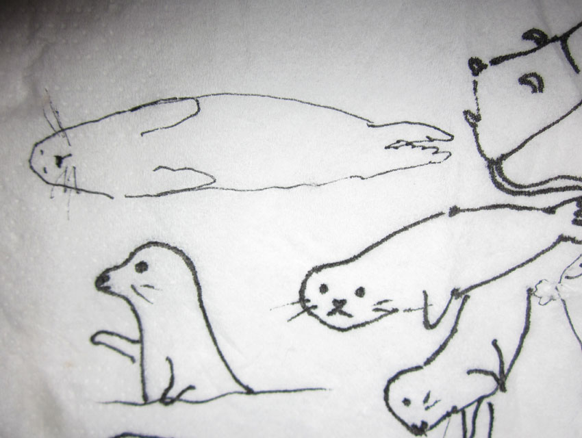 Seals drawn on napkin by Daisy and Darrel